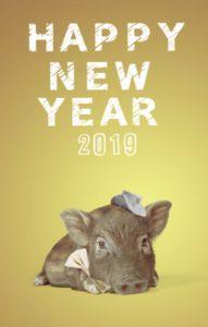 2019年よろしくお願いいたします。